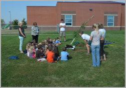 Hawthron tree planting 1
