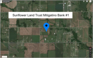 Sunflower Land Trust 2