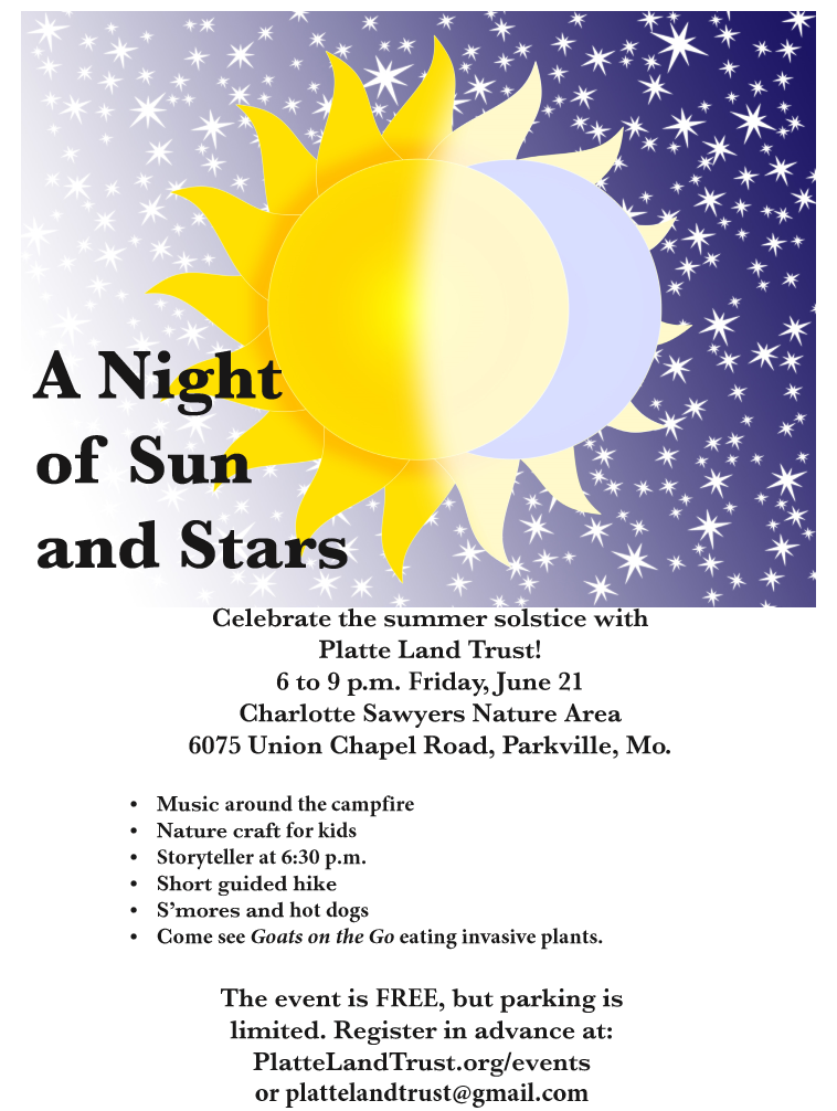 A Night of Sun and Stars